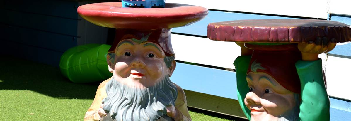 Oddfellows Chester goes Paddling Gnomes